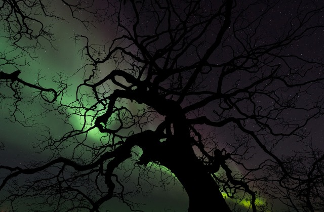 aurora-1979794_1280