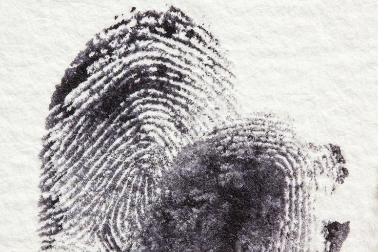 fingerprint-255904_1920